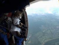cat_jump.png