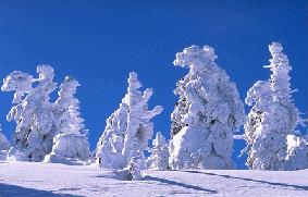 Snow-Queue.png