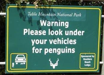 Penguin Terror Alert.jpg