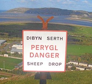 Wales - where all the best sheep go.jpg