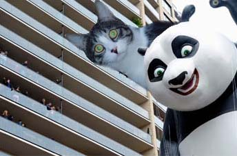 The Cat & Kung Fu Panda.jpg
