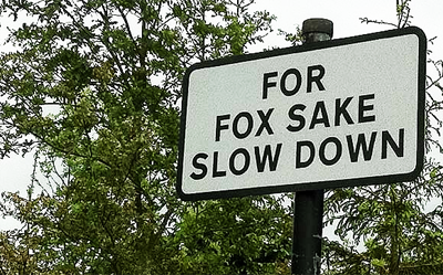 That s Right For Fox sake Slow Down